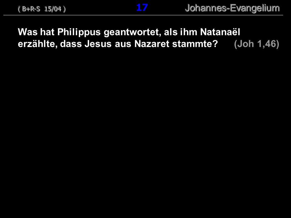 ( B+R-S 15/04 ) 17 Johannes-Evangelium