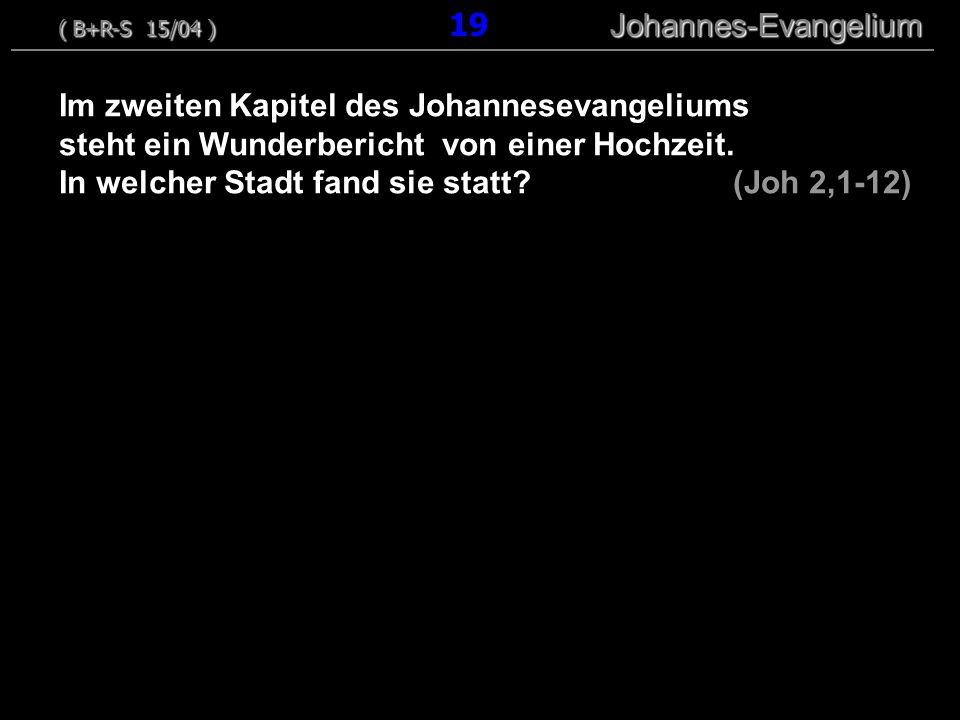 ( B+R-S 15/04 ) 19 Johannes-Evangelium