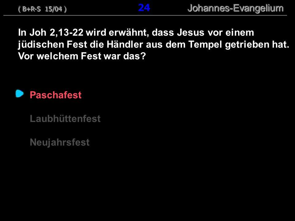 ( B+R-S 15/04 ) 24 Johannes-Evangelium