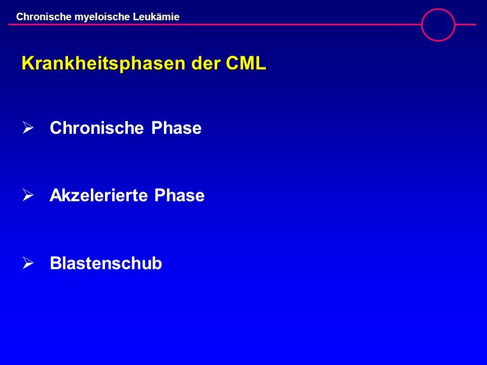 Krankheitsphasen der CML