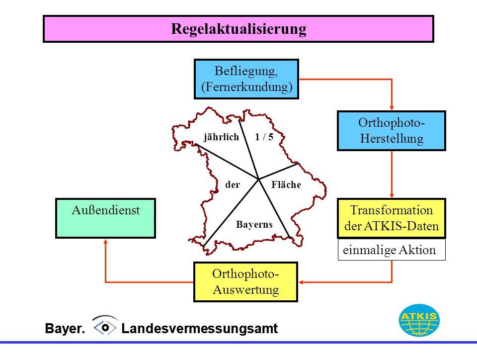 Regelaktualisierung Befliegung, (Fernerkundung) Orthophoto-Herstellung