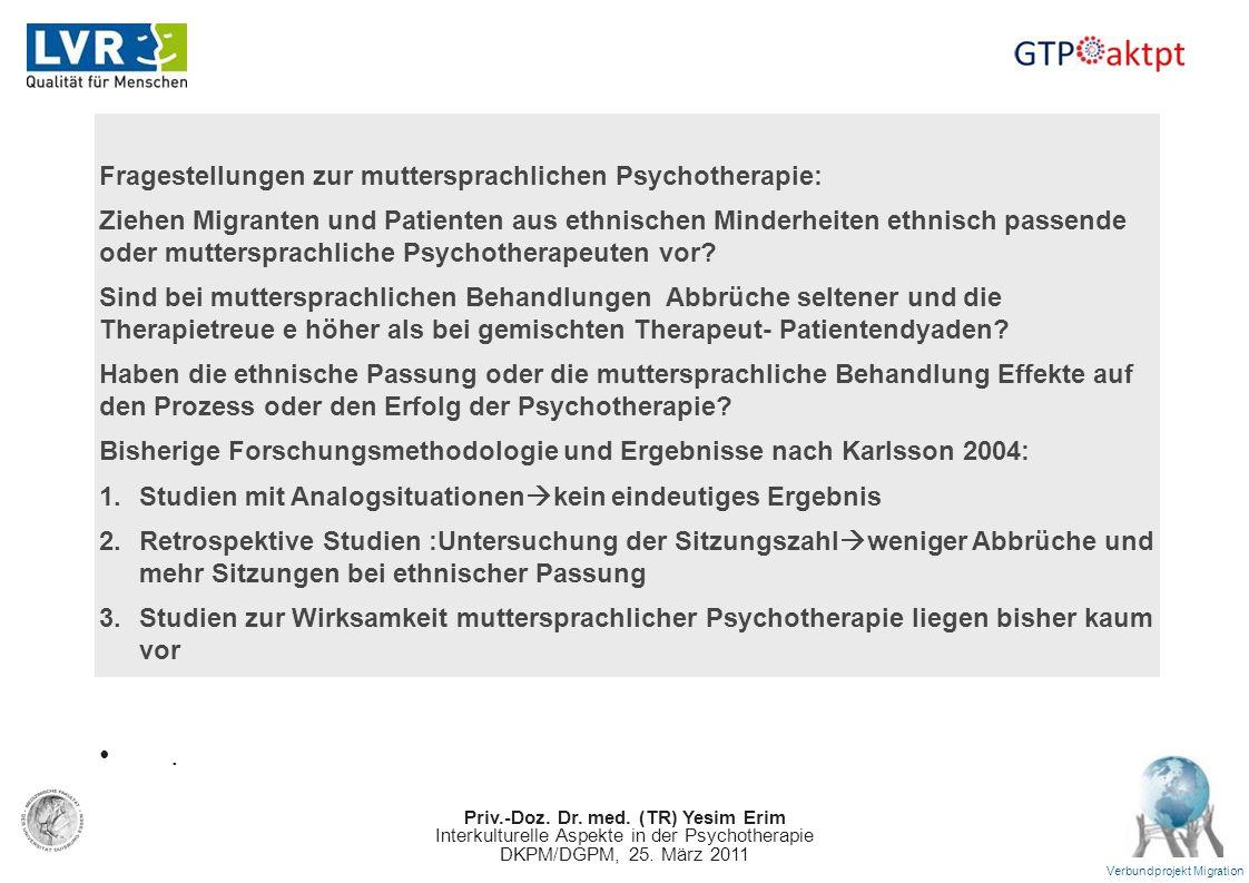 . Fragestellungen zur muttersprachlichen Psychotherapie: