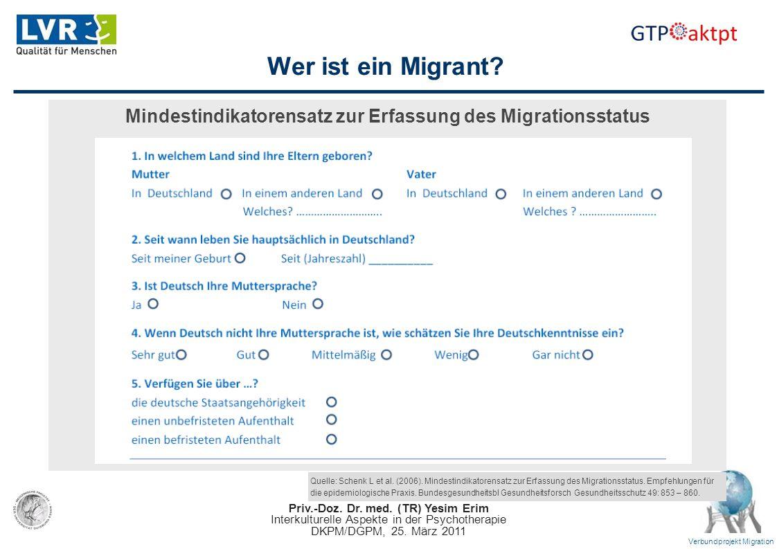 Mindestindikatorensatz zur Erfassung des Migrationsstatus