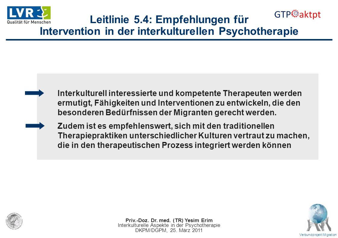 Leitlinie 5.4: Empfehlungen für Intervention in der interkulturellen Psychotherapie