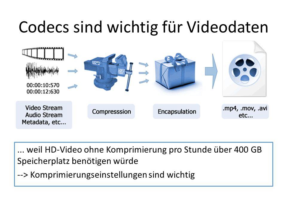 Codecs sind wichtig für Videodaten