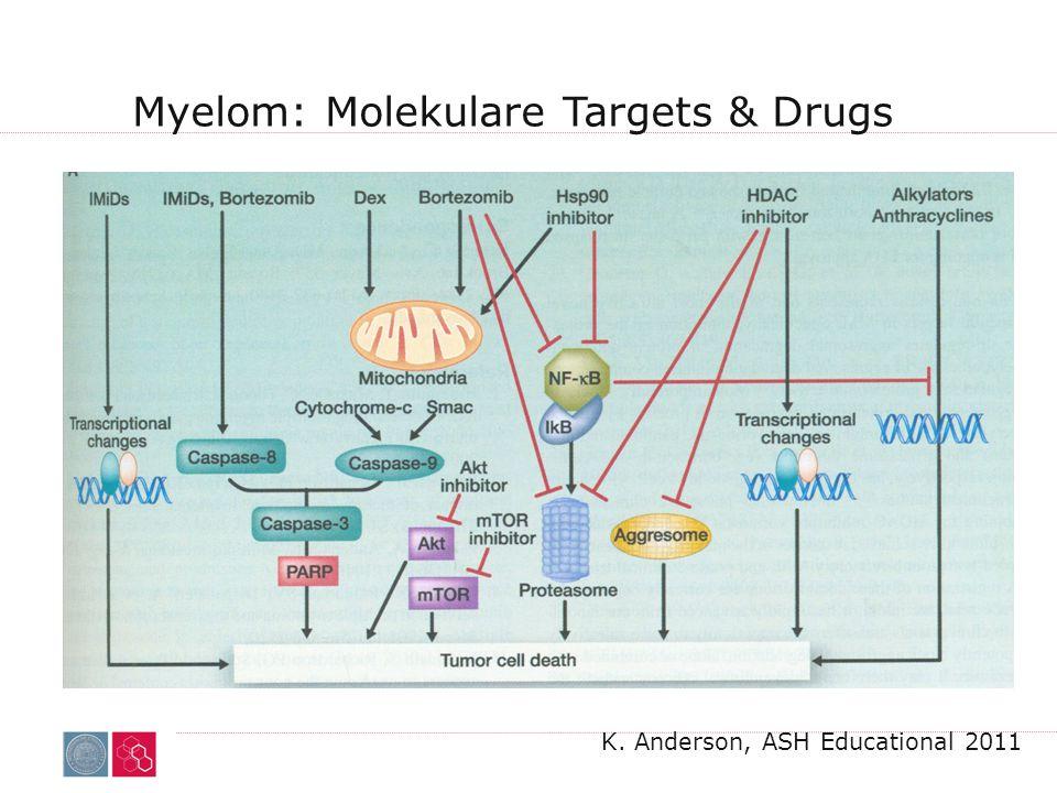 Myelom: Molekulare Targets & Drugs