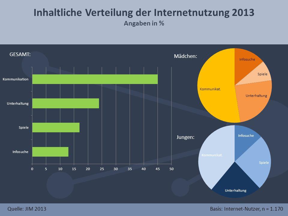 Inhaltliche Verteilung der Internetnutzung 2013