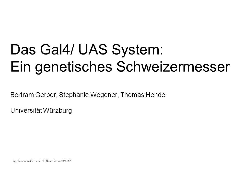 Das Gal4/ UAS System: Ein genetisches Schweizermesser Bertram Gerber, Stephanie Wegener, Thomas Hendel Universität Würzburg