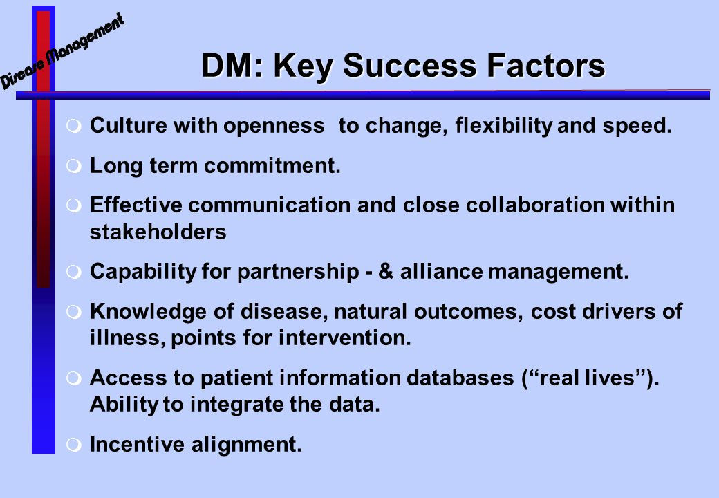 DM: Key Success Factors