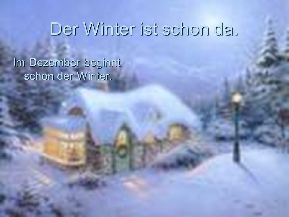 Der Winter ist schon da. Im Dezember beginnt schon der Winter.
