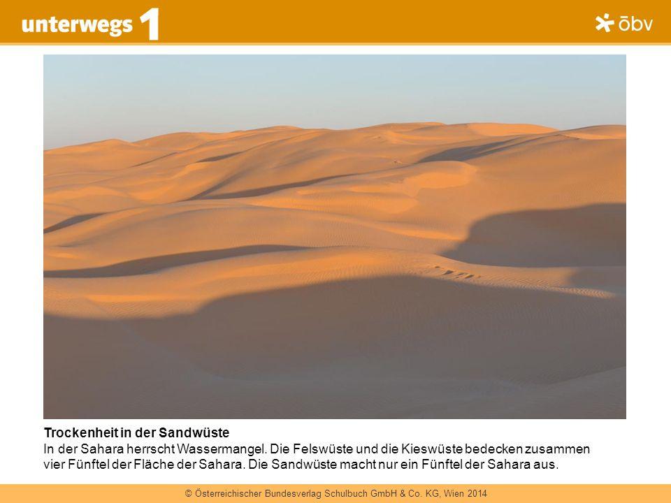 Trockenheit in der Sandwüste