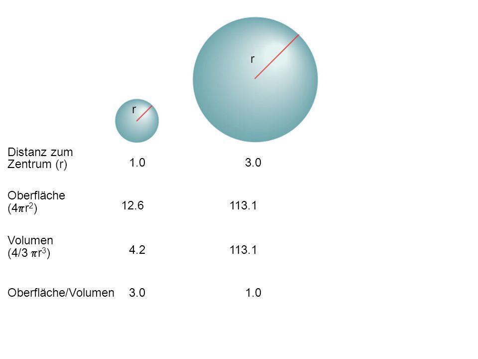 r r Distanz zum Zentrum (r) 1.0 3.0 Oberfläche (4pr2) 12.6 113.1
