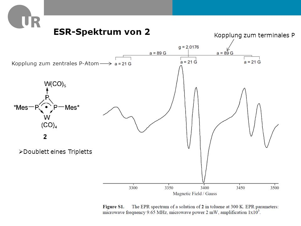 ESR-Spektrum von 2 Kopplung zum terminales P Doublett eines Tripletts