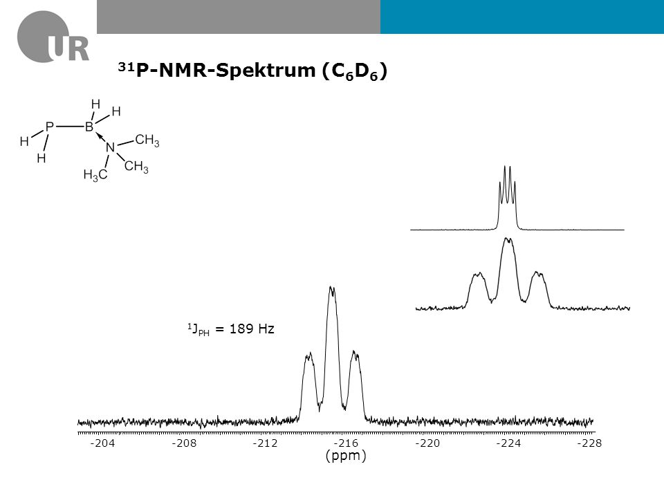 31P-NMR-Spektrum (C6D6) 1JPH = 189 Hz (ppm) -228 -224 -220 -216 -212