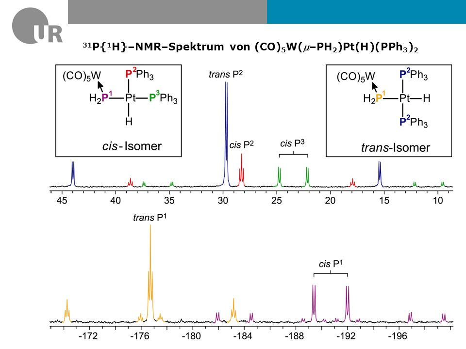 31P{1H}–NMR–Spektrum von (CO)5W(m–PH2)Pt(H)(PPh3)2