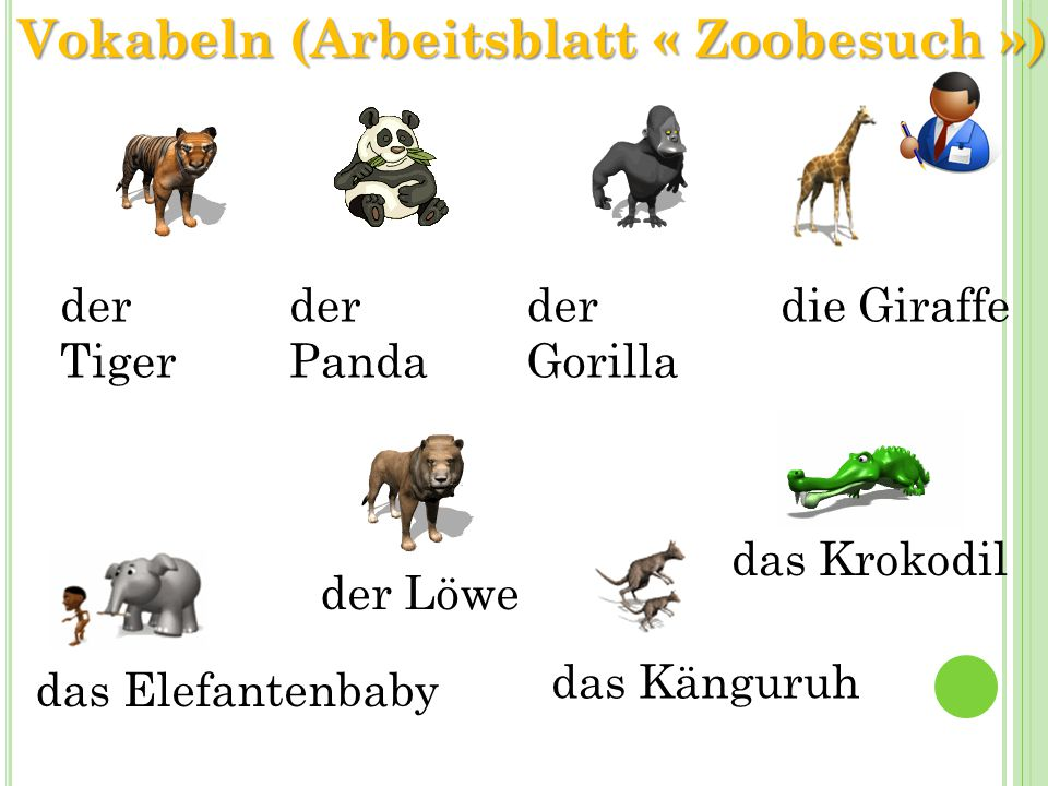 Vokabeln (Arbeitsblatt « Zoobesuch »)