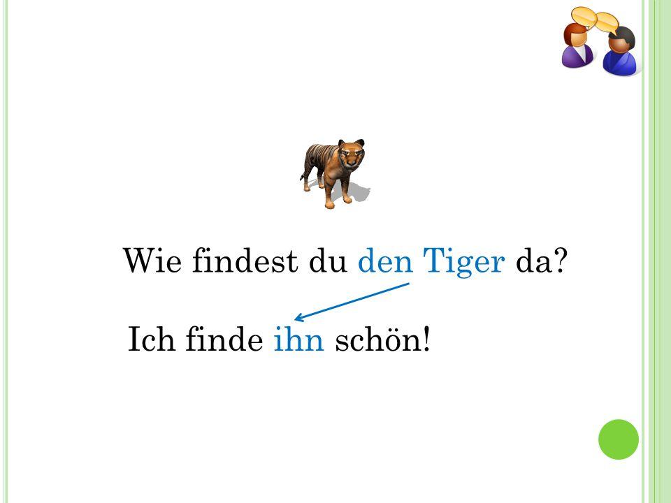 Wie findest du den Tiger da