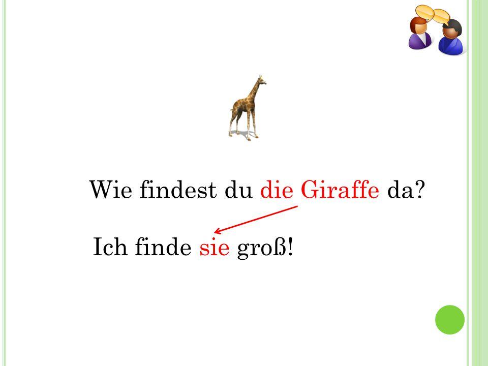 Wie findest du die Giraffe da