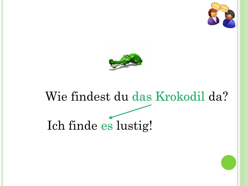 Wie findest du das Krokodil da