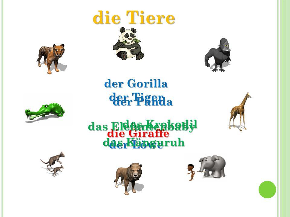 die Tiere der Gorilla der Tiger der Panda das Krokodil