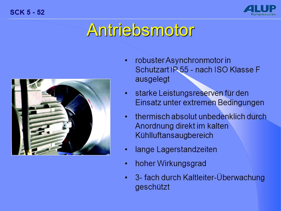 Antriebsmotor robuster Asynchronmotor in