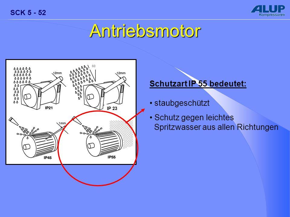 Antriebsmotor Schutzart IP 55 bedeutet: staubgeschützt