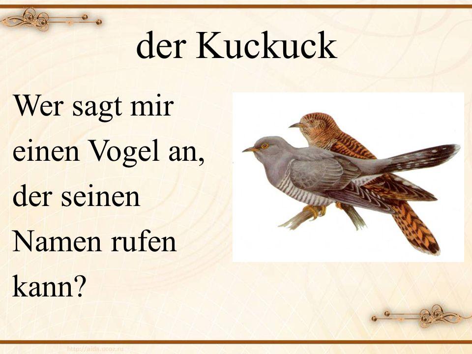 der Kuckuck Wer sagt mir einen Vogel an, der seinen Namen rufen kann