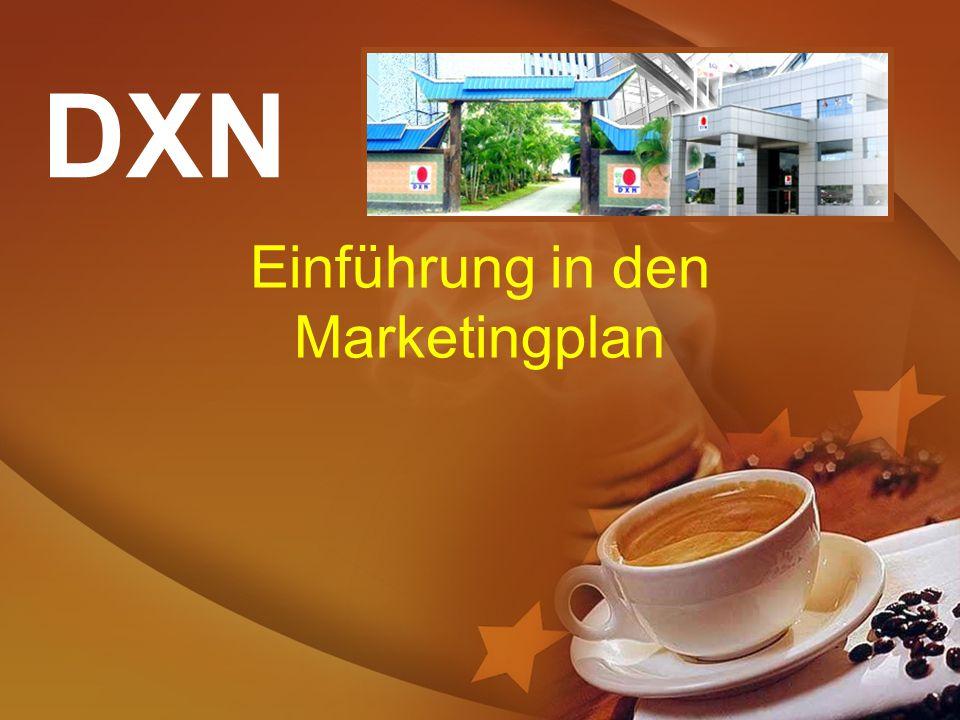 Einführung in den Marketingplan