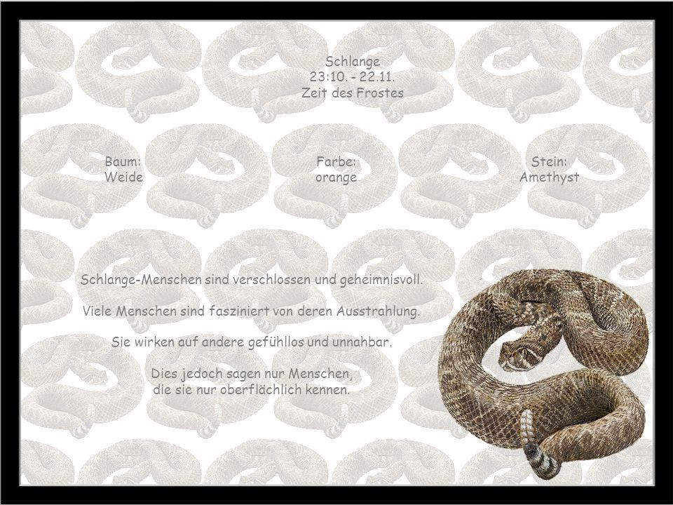 Schlange-Menschen sind verschlossen und geheimnisvoll.