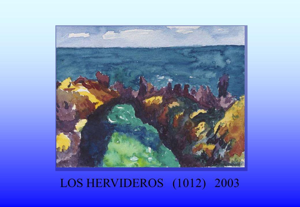 LOS HERVIDEROS (1012) 2003