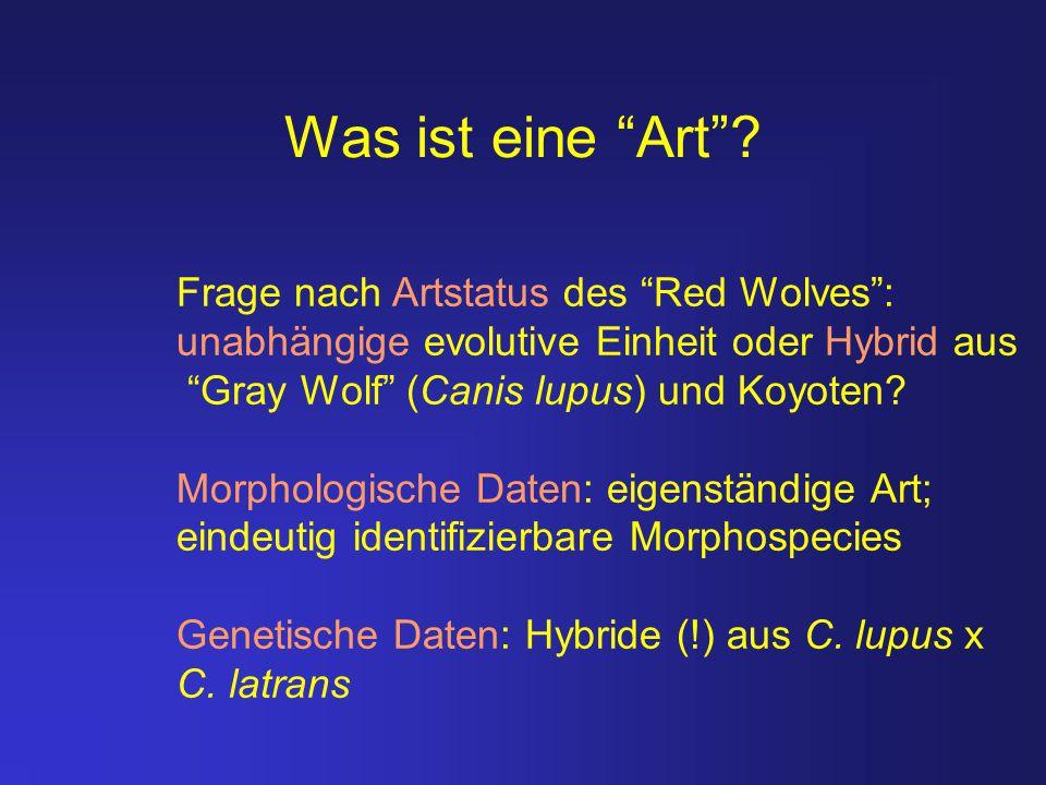 Was ist eine Art Frage nach Artstatus des Red Wolves :