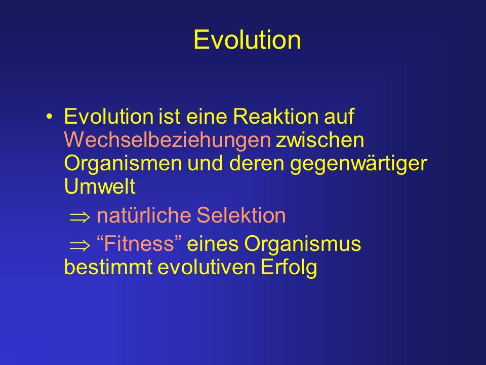 Evolution Evolution ist eine Reaktion auf Wechselbeziehungen zwischen Organismen und deren gegenwärtiger Umwelt.