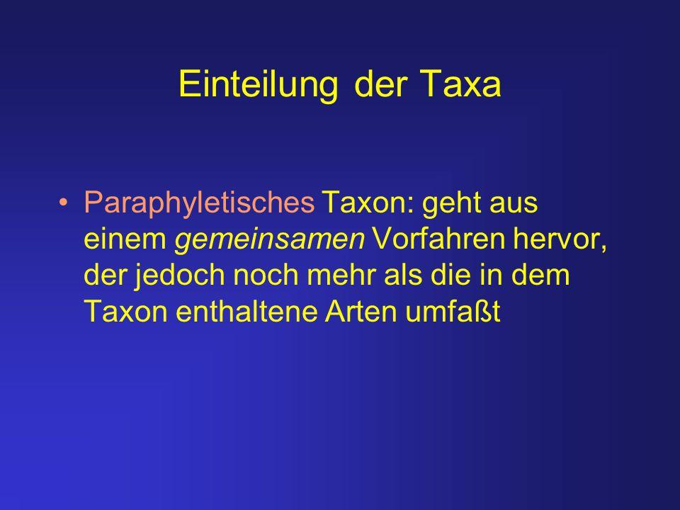 Einteilung der Taxa