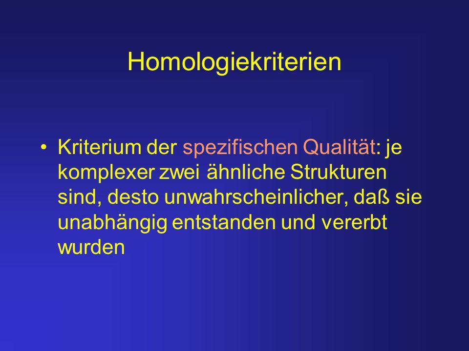 Homologiekriterien