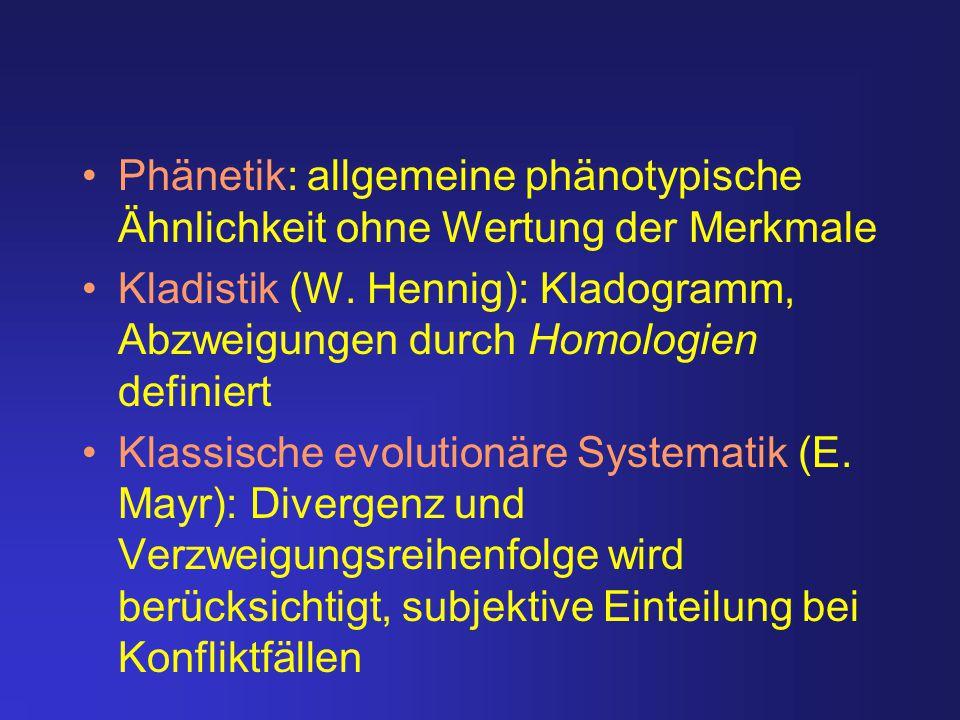 Phänetik: allgemeine phänotypische Ähnlichkeit ohne Wertung der Merkmale