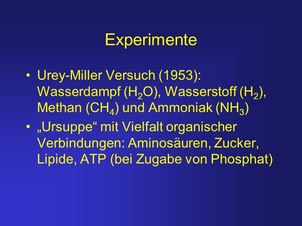 Experimente Urey-Miller Versuch (1953): Wasserdampf (H2O), Wasserstoff (H2), Methan (CH4) und Ammoniak (NH3)