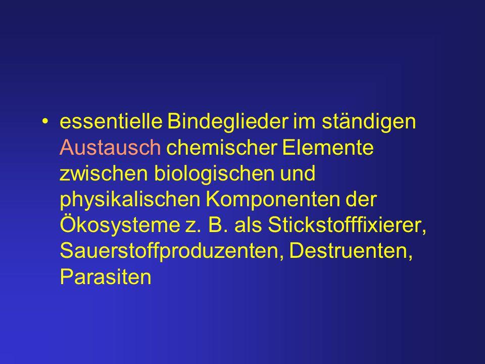 essentielle Bindeglieder im ständigen Austausch chemischer Elemente zwischen biologischen und physikalischen Komponenten der Ökosysteme z.