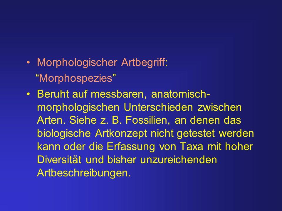 Morphologischer Artbegriff: