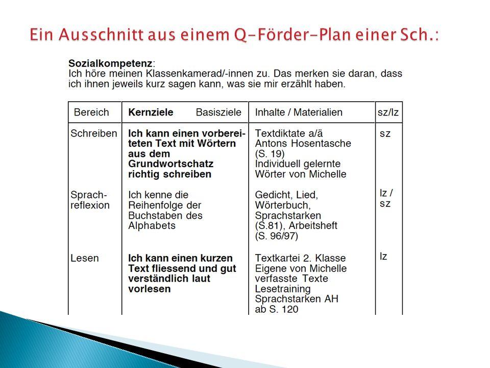 Ein Ausschnitt aus einem Q-Förder-Plan einer Sch.: