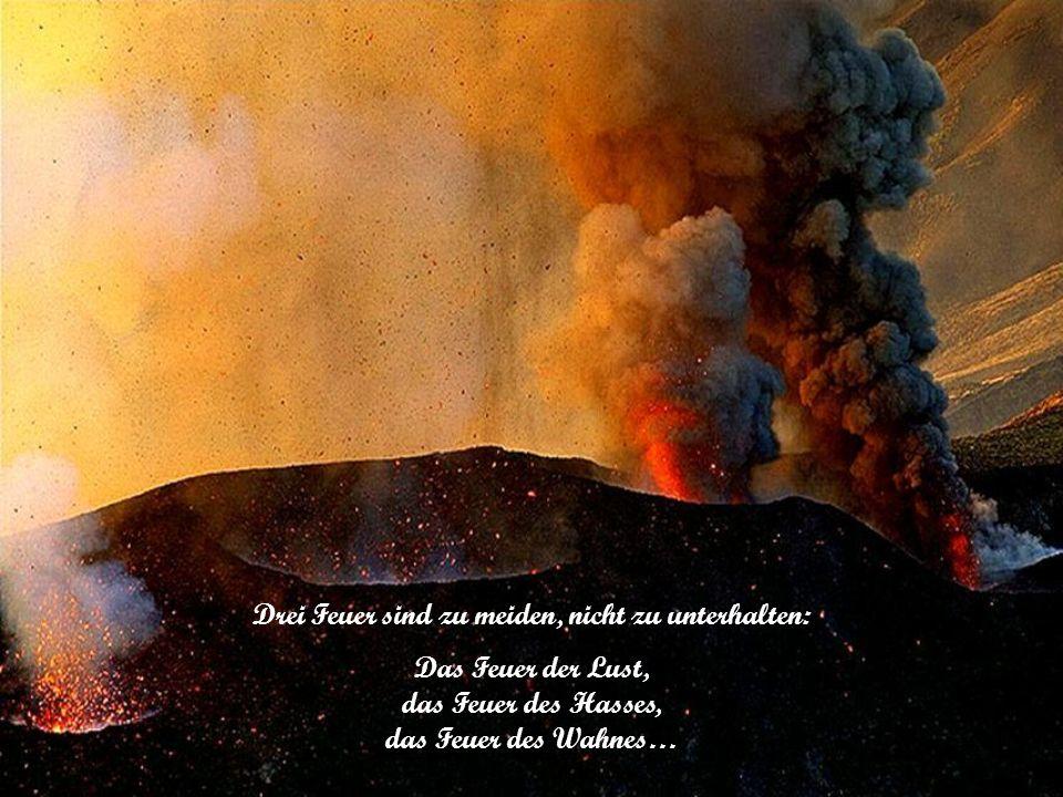 Drei Feuer sind zu meiden, nicht zu unterhalten:
