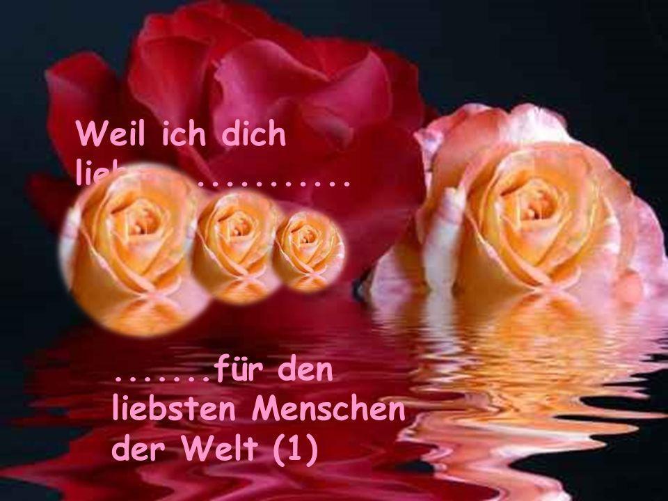 Weil ich dich liebe.............. .......für den liebsten Menschen der Welt (1)