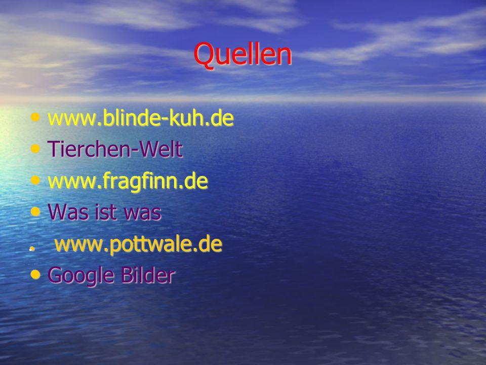 Quellen www.blinde-kuh.de Tierchen-Welt www.fragfinn.de Was ist was