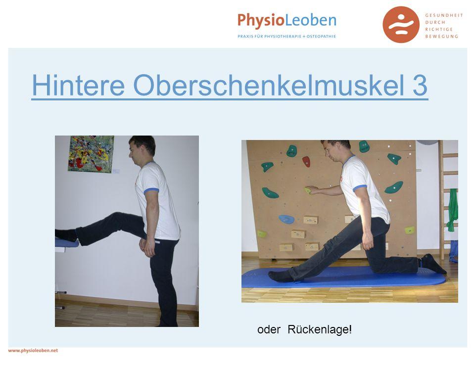 Hintere Oberschenkelmuskel 3