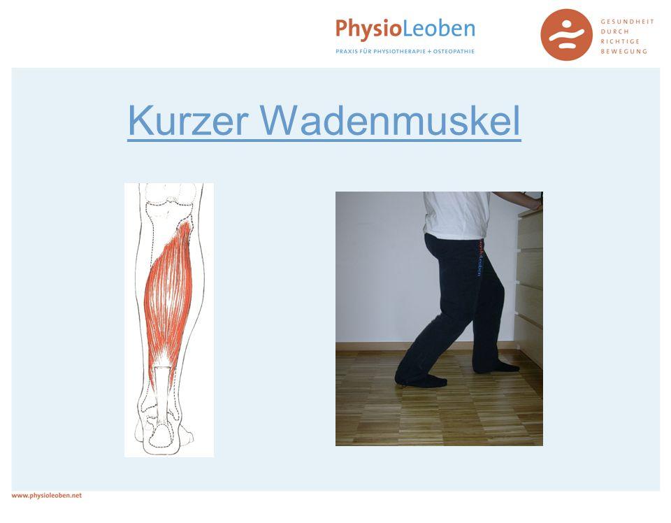 Kurzer Wadenmuskel