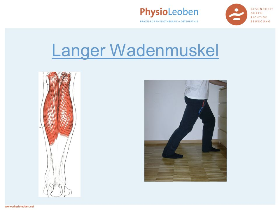 Langer Wadenmuskel