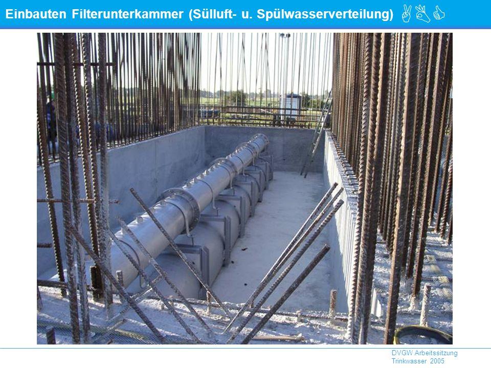 Einbauten Filterunterkammer (Sülluft- u. Spülwasserverteilung)