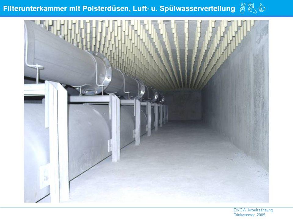 Filterunterkammer mit Polsterdüsen, Luft- u. Spülwasserverteilung