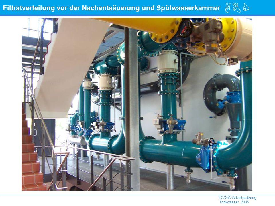Filtratverteilung vor der Nachentsäuerung und Spülwasserkammer