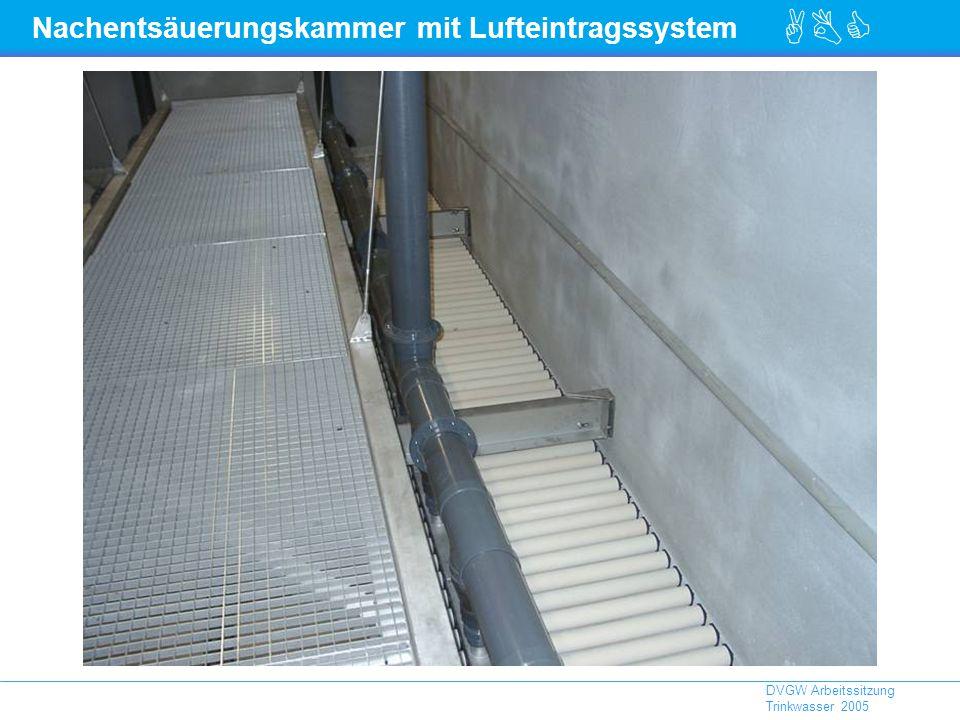 Nachentsäuerungskammer mit Lufteintragssystem