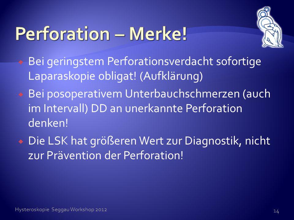Perforation – Merke! Bei geringstem Perforationsverdacht sofortige Laparaskopie obligat! (Aufklärung)